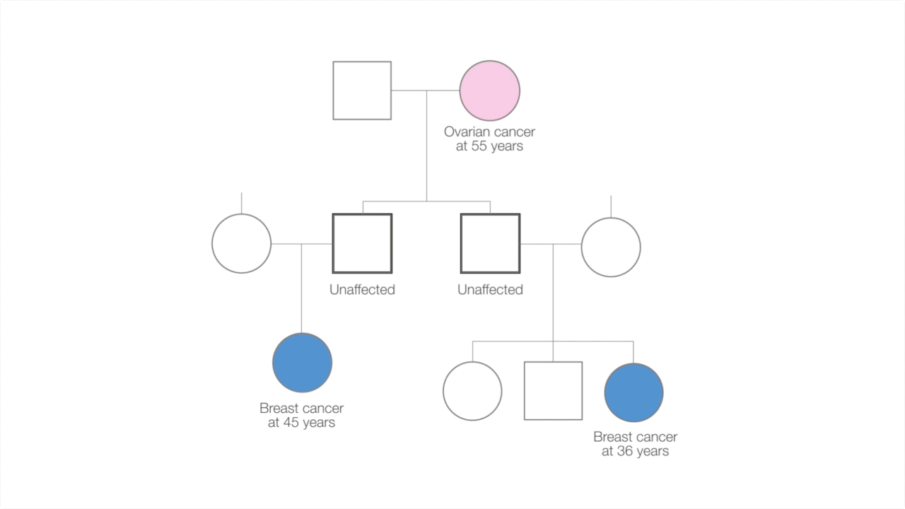 Family tree diagram showing individuals affected by cancer